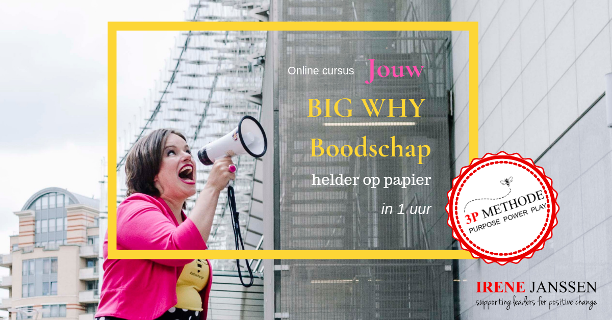 Plaatje Upsell Online cursus Jouw BIG WHY